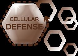 promo2020_cellular-defense-desktop